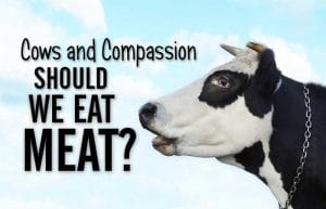 Should believers eat meat?