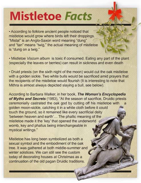 mistletoe-facts