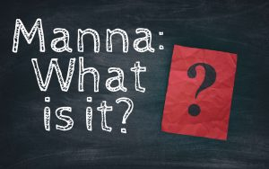 Manna - What is it?
