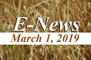 YRM E-News March 1, 2019